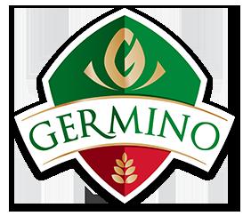 germino.ro